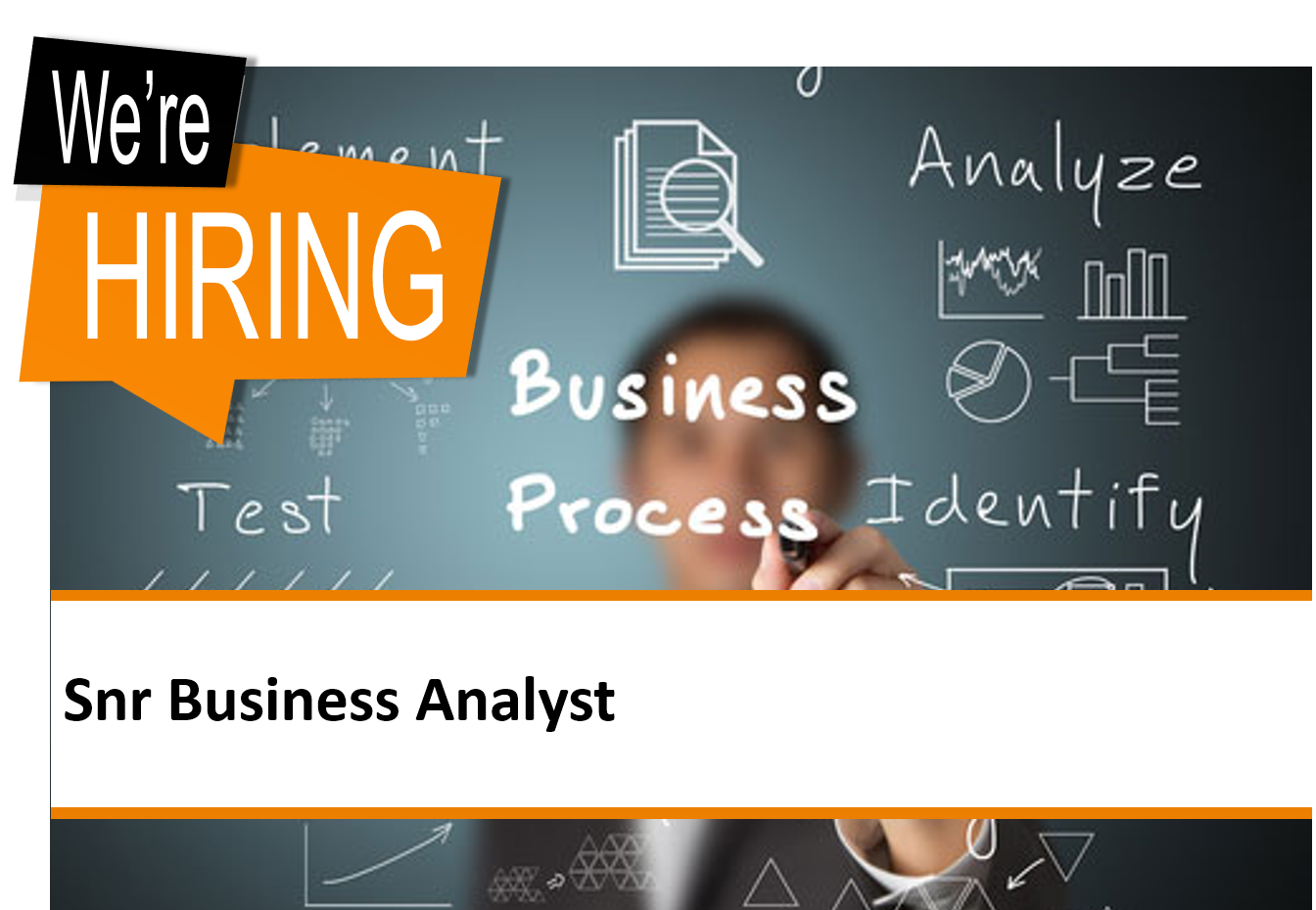 Senior Business Analyst Contract Digiterra Group